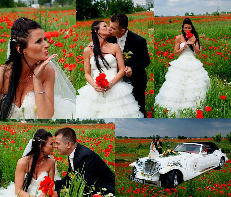 pipacsmező és esküvői fotó